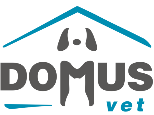 Domus Vet
